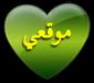 http://mos7afi.lolbb.com