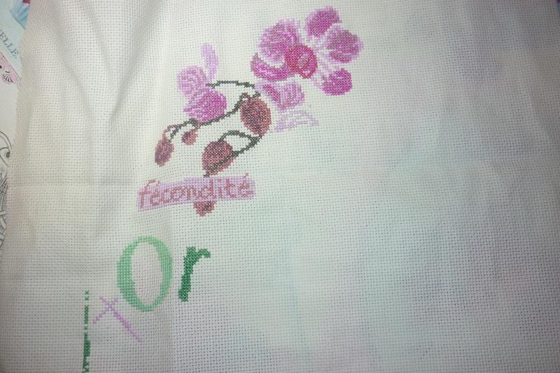 SAL Lilipoint Orchidée - FINI - Page 18 P1080631