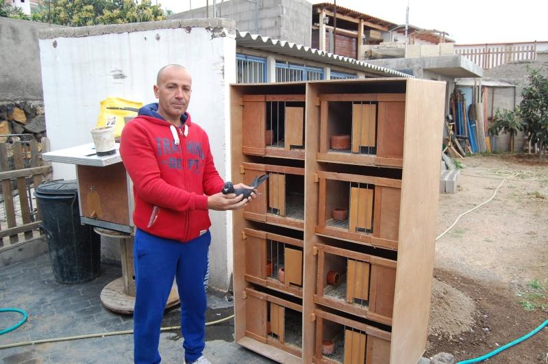 buchones de toño en arafo tenerife Dsc_0638