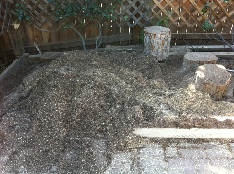 Any suggestions on the stump grinding sawdust plus soil? Tree_c14