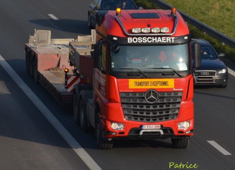 Bosschaert 196pp10