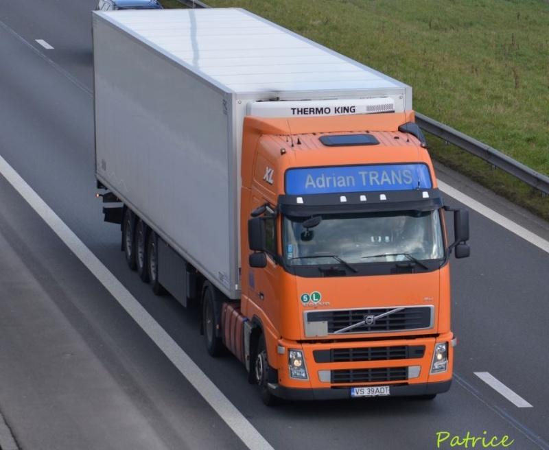 Adrian Trans Dsc_1710