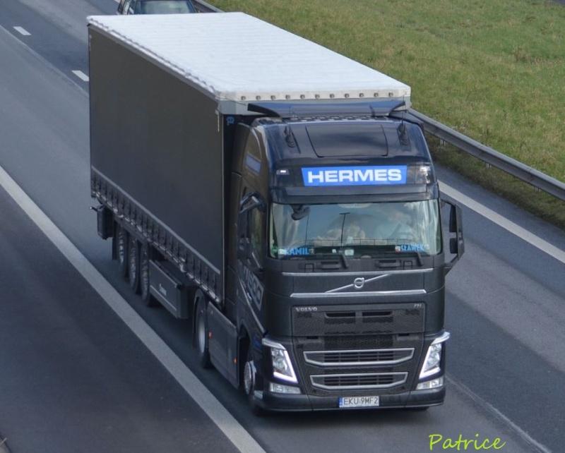 Hermes  (Pluznica) Hermes10
