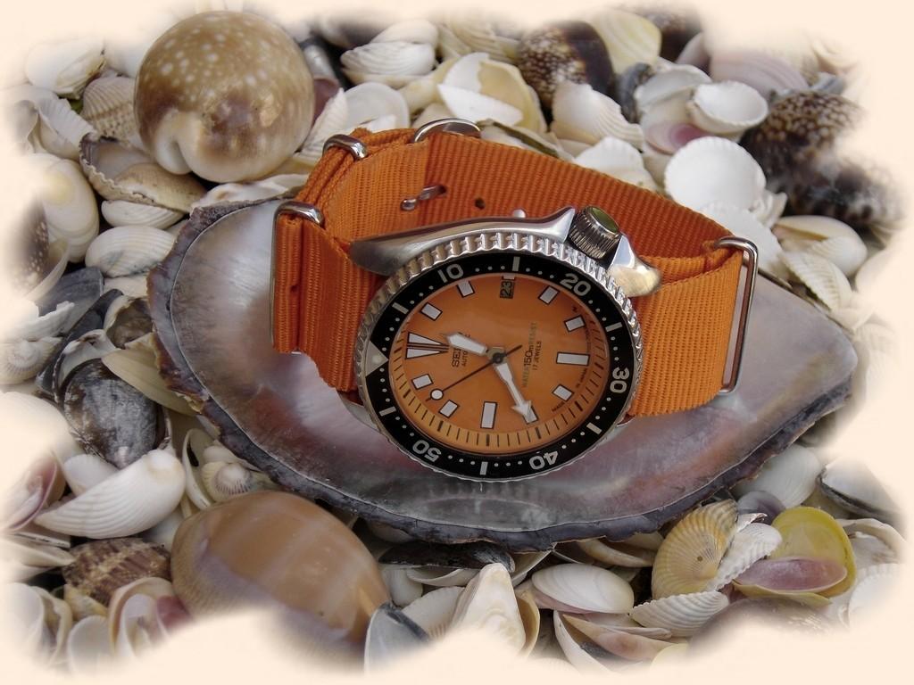 la montre du vendredi 13 février Rtdsc011