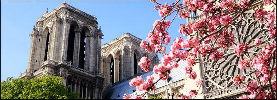 La cathédrale de Paris