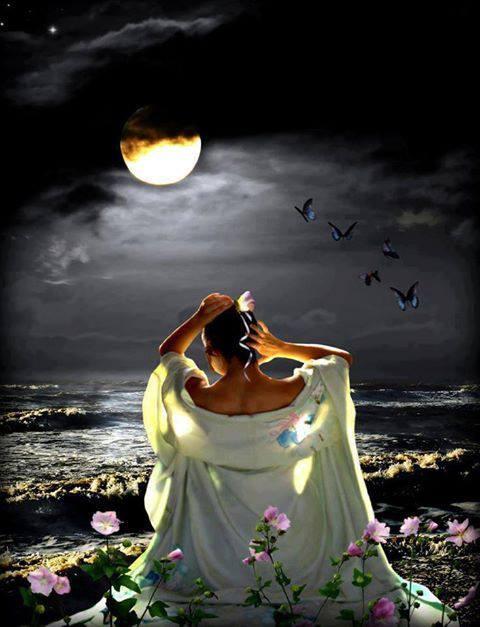 La femme et la Lune ...  - Page 3 Toilet10
