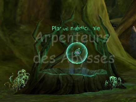 Abîmes de Taloc - Level 51 Plante10