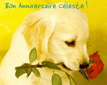 Bon anniversaire Céleste ! Cylest10
