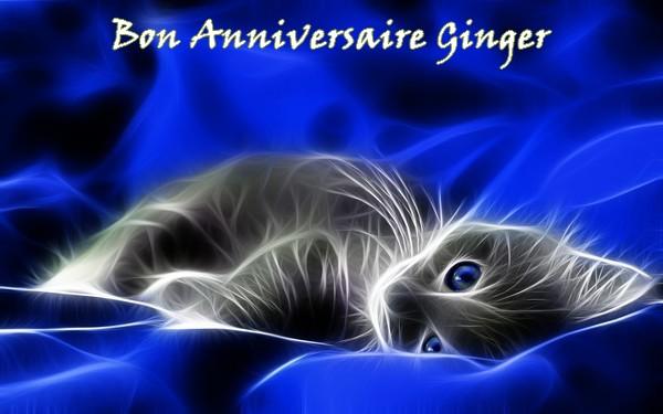 Bon Anniversaire Ginger! Ginger10