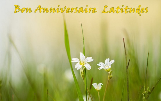Bon Anni Latitudes ! Lati11