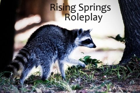Rising Springs Roleplay