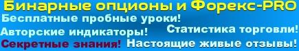 """Авторский индикатор """"binaryPro"""" 2014 год Banner10"""