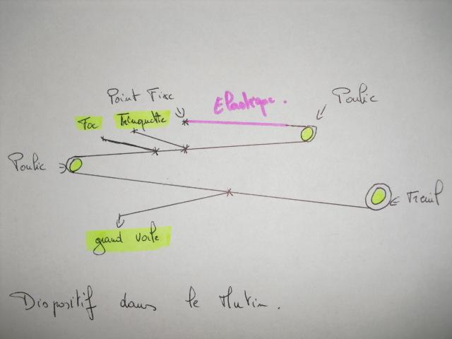 présentation du mutin  - Page 2 Cimg6210