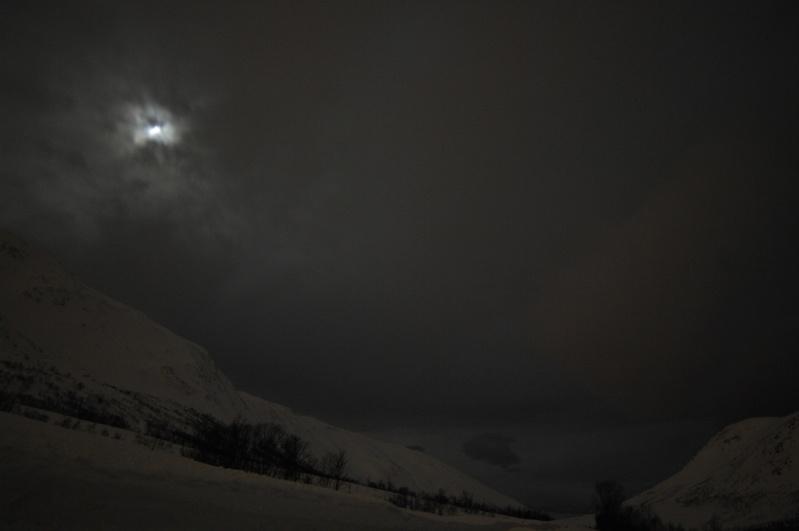 Chasse aux aurores à Tromso _tpi2110
