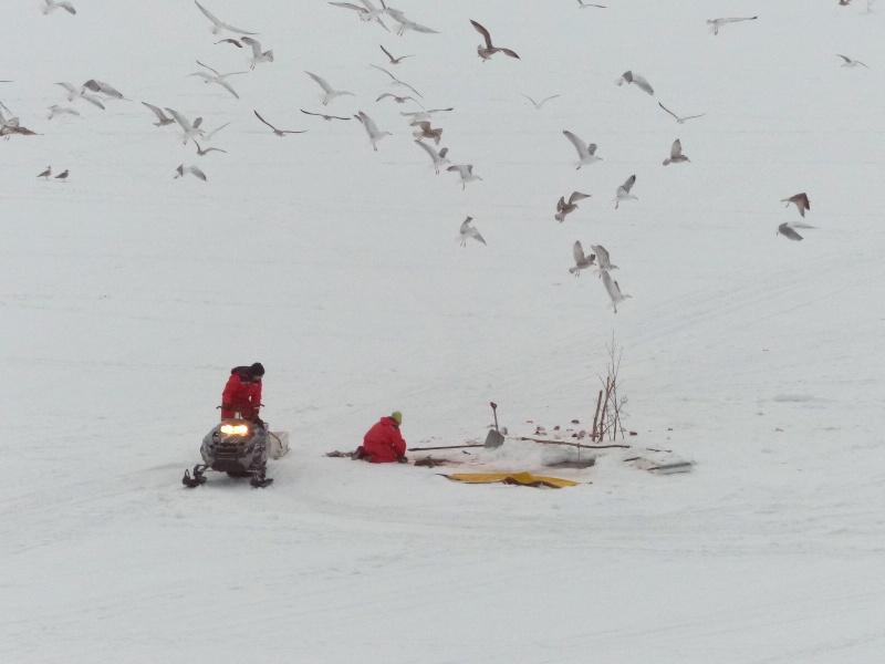 Chasse aux aurores à Tromso P1030411