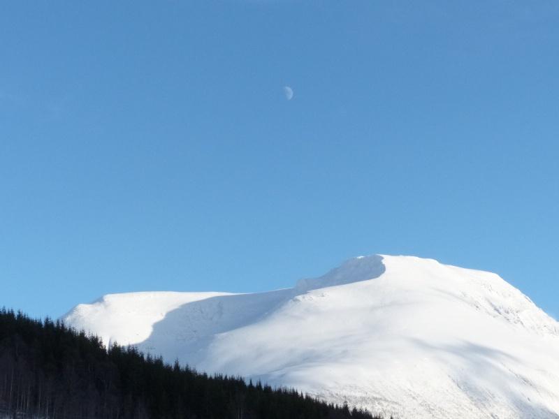 Chasse aux aurores à Tromso P1030414