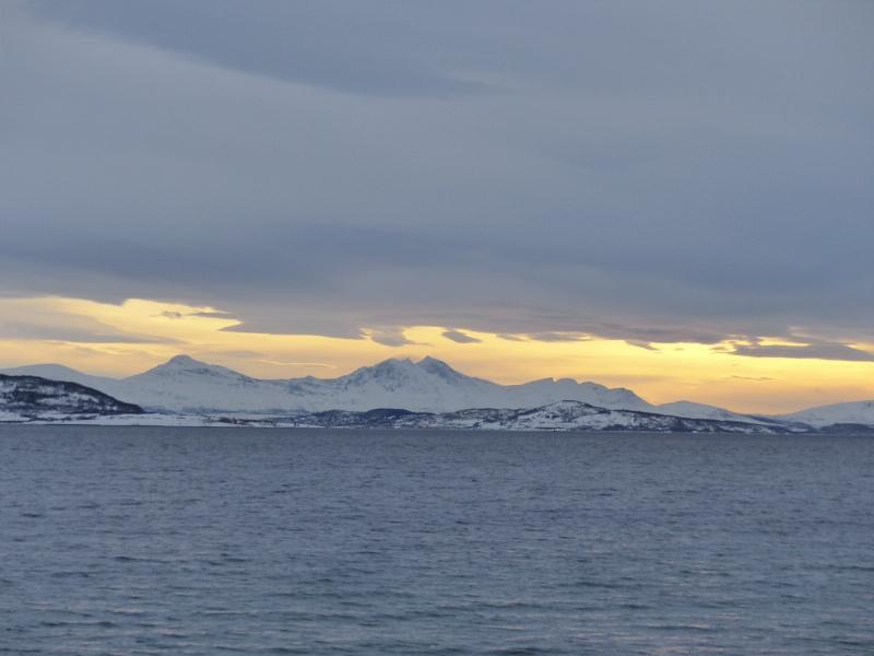 Chasse aux aurores à Tromso P1030512