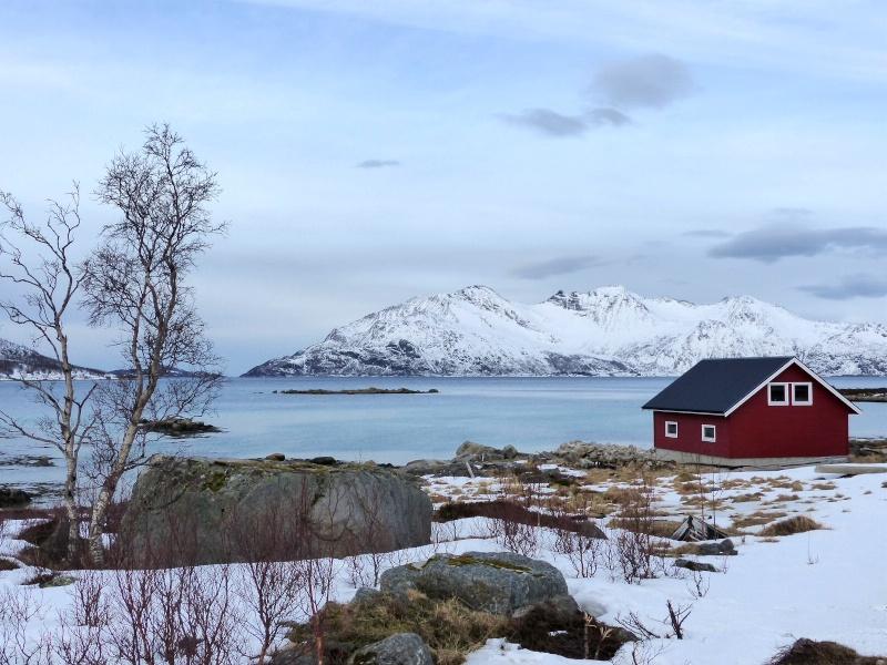 Chasse aux aurores à Tromso P1030514