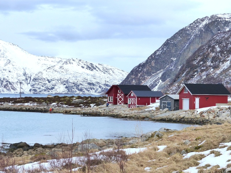 Chasse aux aurores à Tromso P1030516