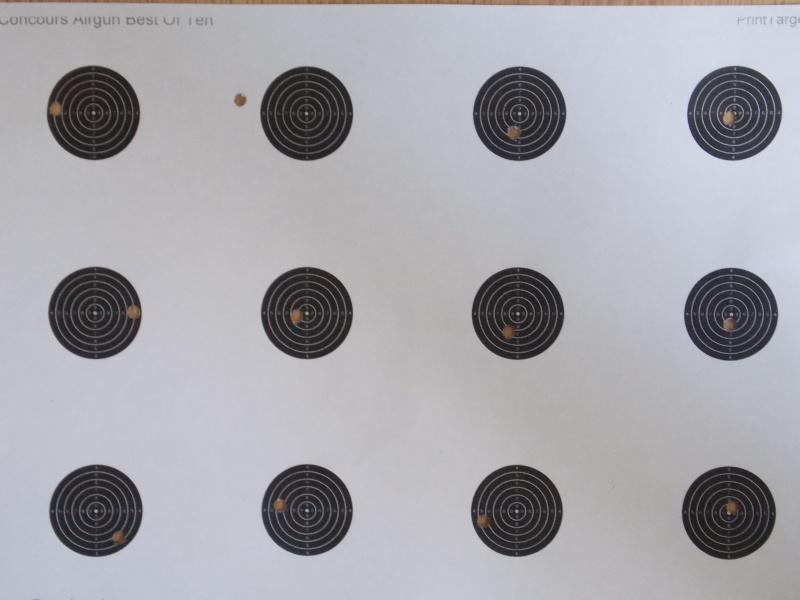entrainement 10m carabine sur cible cc 100point - Page 3 Dscn1811