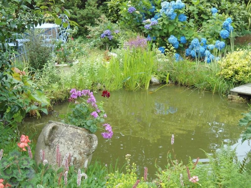 bassins fleuris  et poissons  - Page 4 Le_26_10