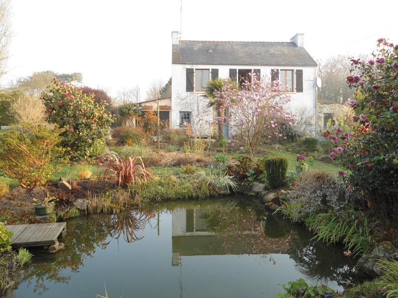 bassins fleuris  et poissons  Rrrrrr10