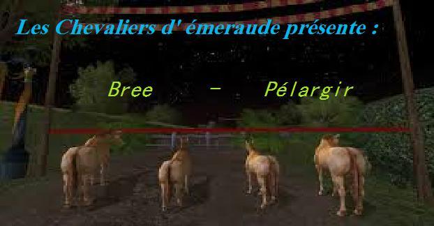 Bree - Pelargir ( la course ) Sans_t10