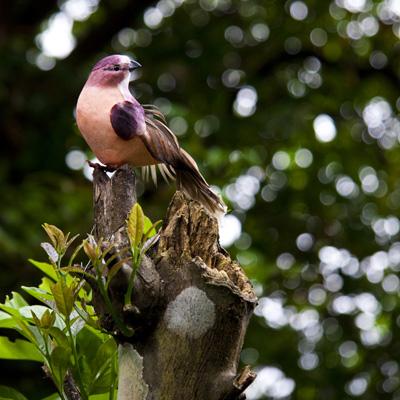Sara Mata - Autenticidad Artificial - Costa Rica Sarama11