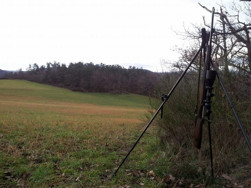 Equipement de base pour le tir d'été du renard 16069610