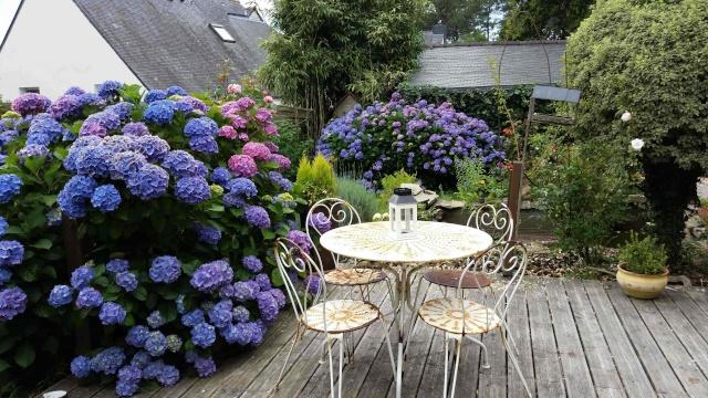 Dans le jardin aujourd'hui ... Juin_210