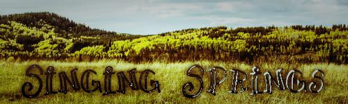Singing Springs