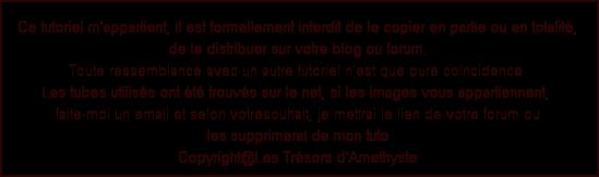LE PETIT PEINTRE Image112