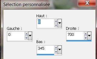 PSP - Femme printanière Sylect10