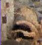 un site à découvrir n° 2 -ajonc-28 janvier trouvé par Jovany Captur12