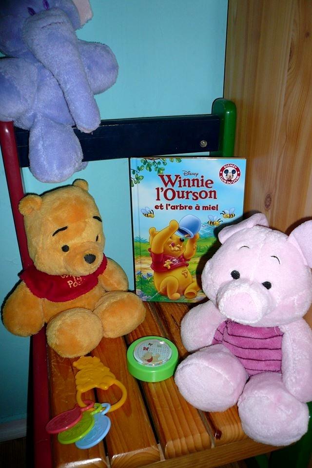 Mon Petit Nid Disney (Appartement Disney) 813