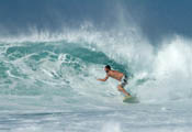 B-King de couleur différente... Surfeu11