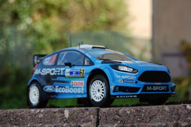 Fiesta WRC Rallye du Mexique 2016 Dsc_1910