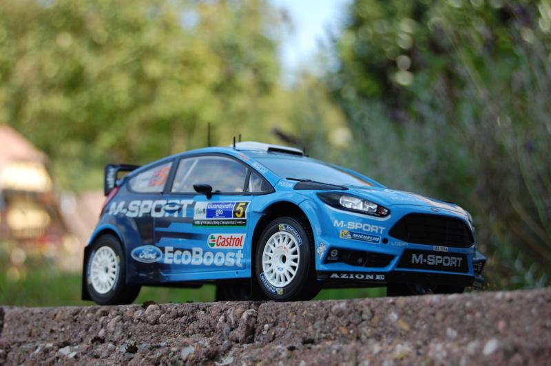Fiesta WRC Rallye du Mexique 2016 Dsc_1911