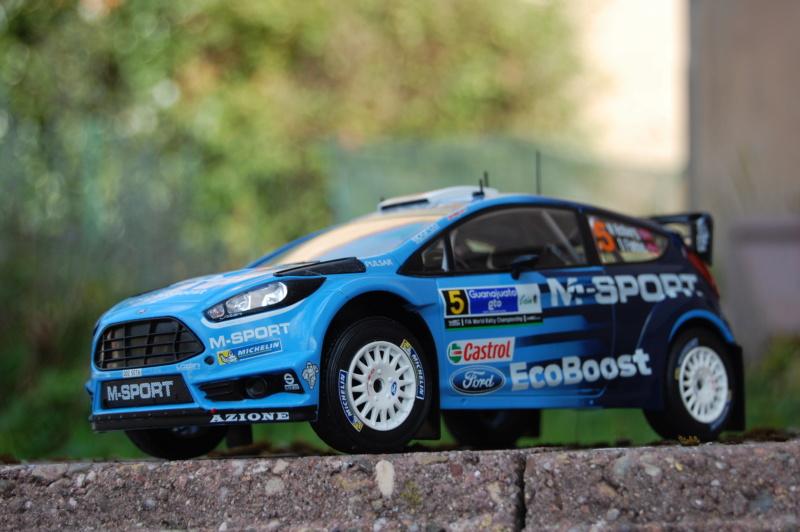 Fiesta WRC Rallye du Mexique 2016 Dsc_1922
