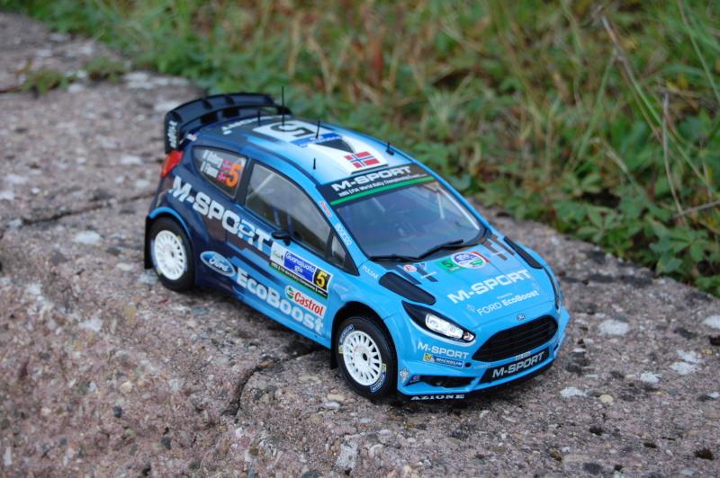 Fiesta WRC Rallye du Mexique 2016 Dsc_1929
