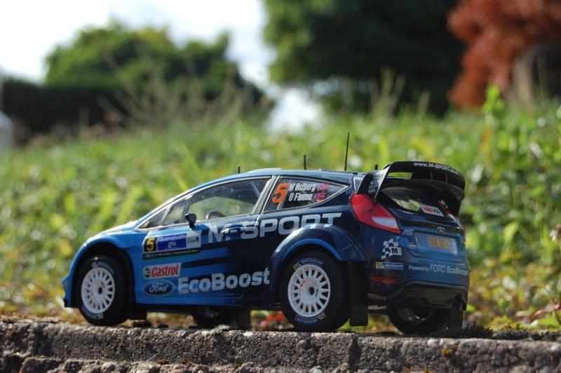 Fiesta WRC Rallye du Mexique 2016 Dsc_1932