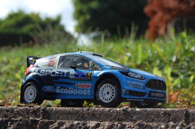 Fiesta WRC Rallye du Mexique 2016 Dsc_1933