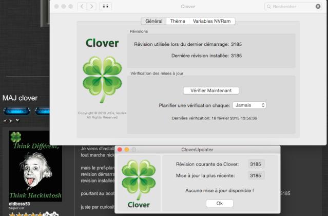 MAJ clover Ww10