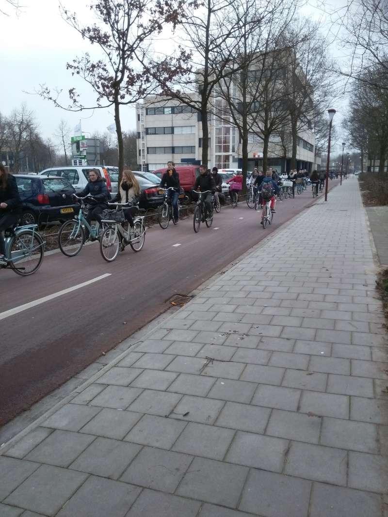 Petites choses sur Utrecht et plus largement les Pays-bas Img_2011