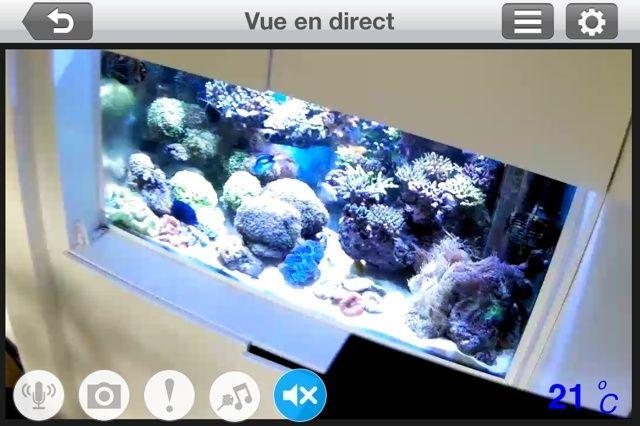 Le nouveau Reef d'Alexpilon, 600l custom - Page 20 Img_5010