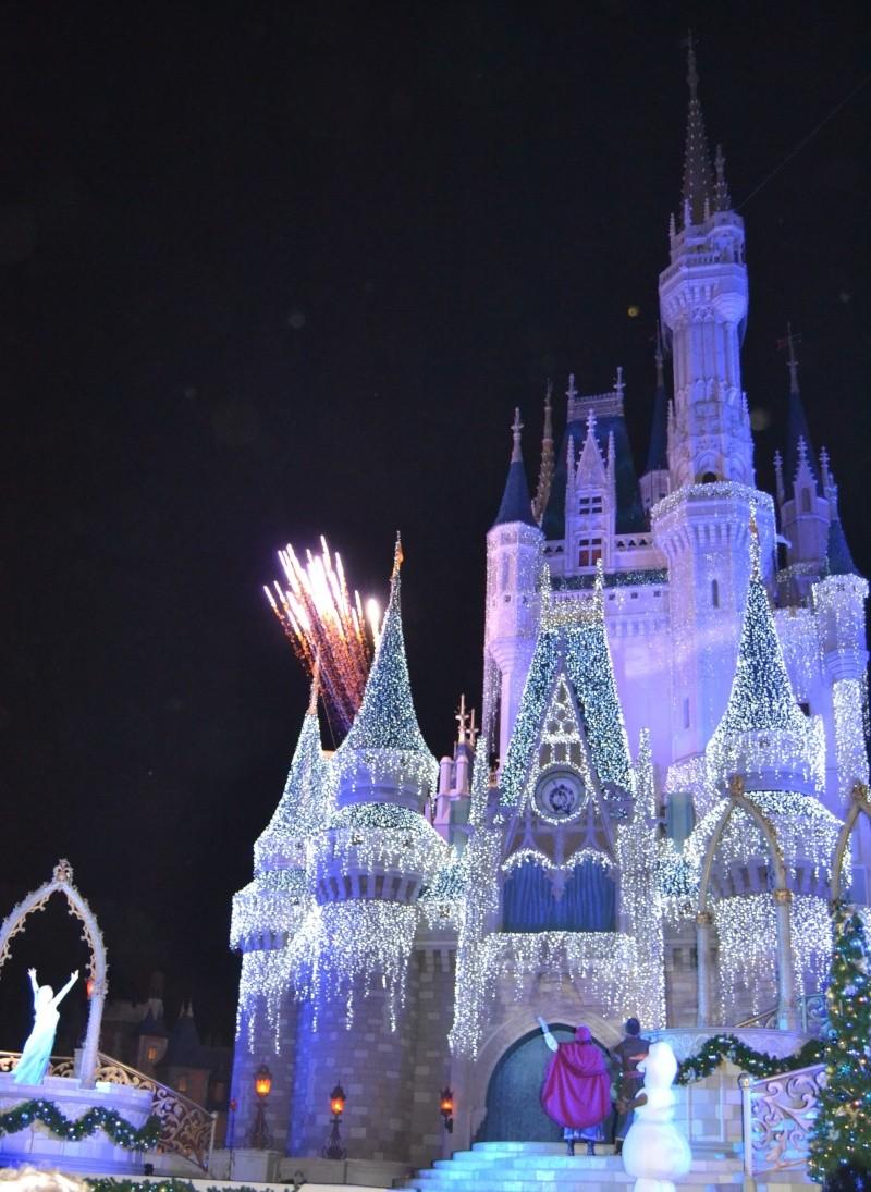 On fête nos 4ans de mariage a WDW puis Disney cruise line - Page 7 Dsc_0614
