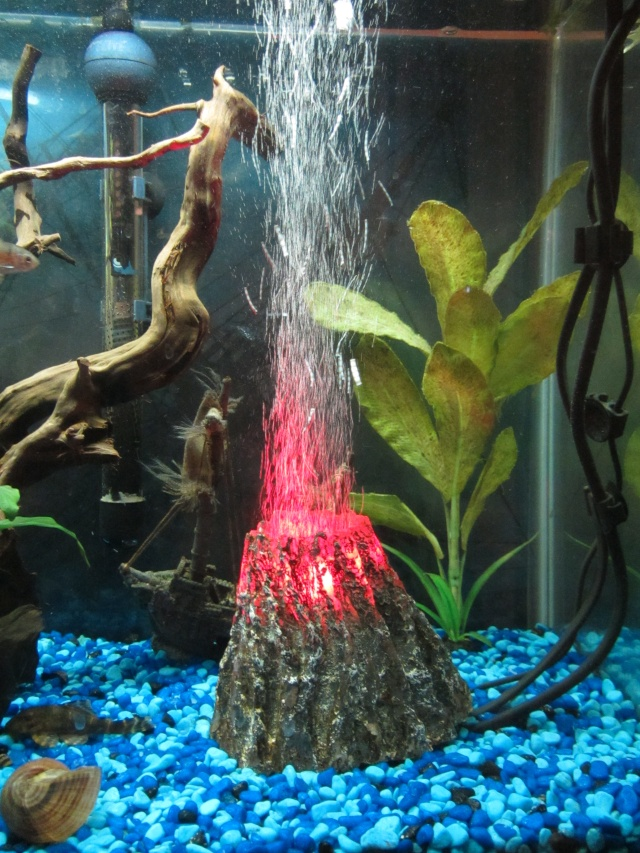 Anyone used underwater led lights? Img_2710