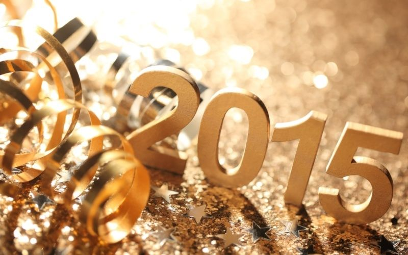 Voeux 2015 Bonne_11