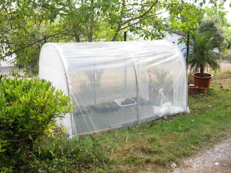 avis serre en verre trempé double vitrage 14mm et toit polycarbonate 18mm Img_0910