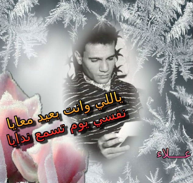 عندليب الحب في يوم الحب Aooa_u10